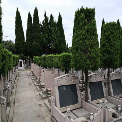 乐乡公墓艺术墓卧碑